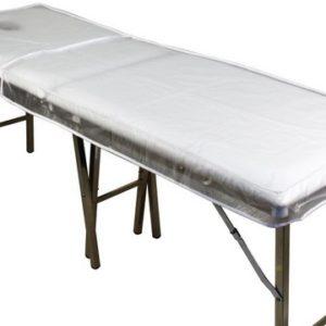 Vinyl Transparent Bed Cover